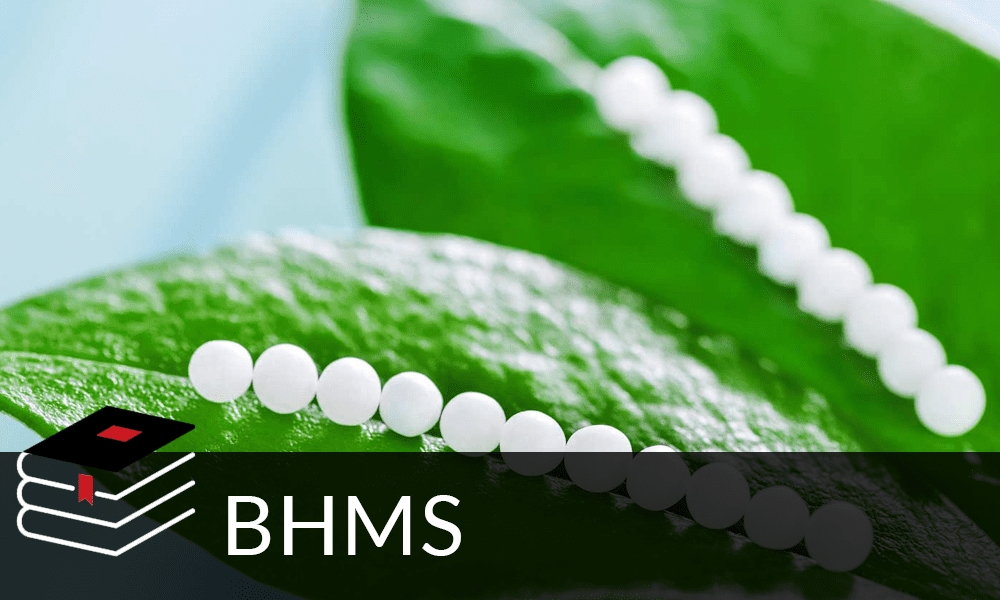 Top education consultants for BHMS